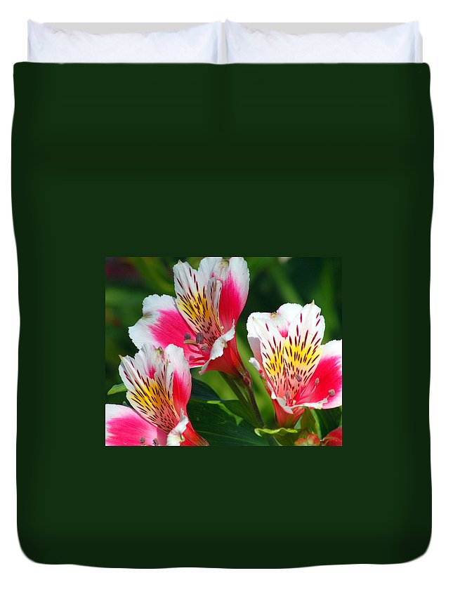 Peruvian Duvet Cover featuring the photograph Pink Peruvian Lily 2 by Amy Fose