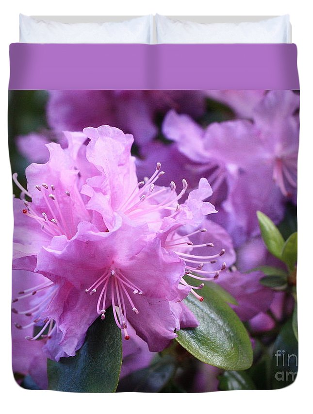 Flower Duvet Cover featuring the photograph Light Purple Rhododendron With Leaves by Carol Groenen