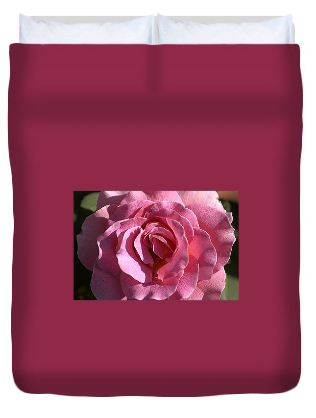 Clay Duvet Cover featuring the photograph Pink Rose by Clayton Bruster