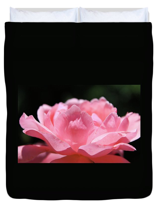 Pink Duvet Cover featuring the photograph Pink Rose by Clyde Dellinger