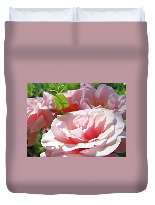 Rose Duvet Cover featuring the photograph Pink Rose Flower Garden Art Prints Pastel Pink Roses Baslee Troutman by Baslee Troutman