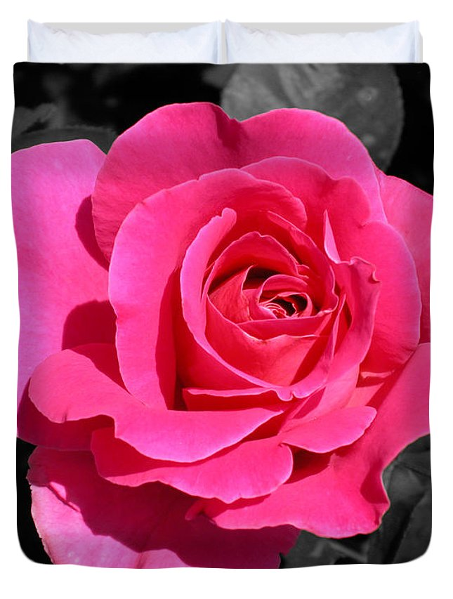 Pink Duvet Cover featuring the photograph Perfect Pink Rose by Michael Bessler