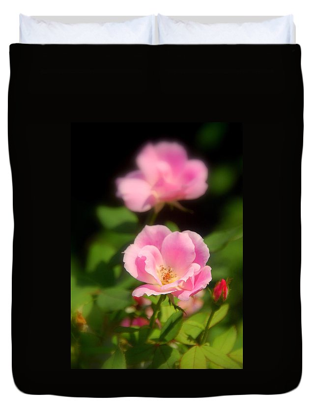 Pink Rose Duvet Cover featuring the photograph Pink Rose by Susanne Van Hulst