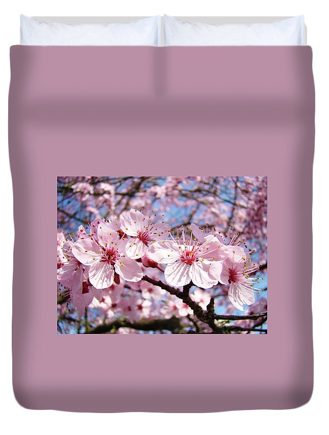 Nature Duvet Cover featuring the photograph Pink Spring Blossoms Art Print Blue Sky Landscape Baslee Troutman by Baslee Troutman