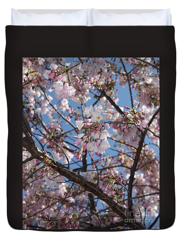 Spring Duvet Cover featuring the photograph Pink Spring Blossoms by Carol Groenen