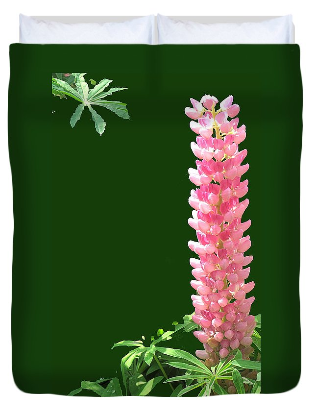 Flower Duvet Cover featuring the photograph Pink Tower by Ian MacDonald