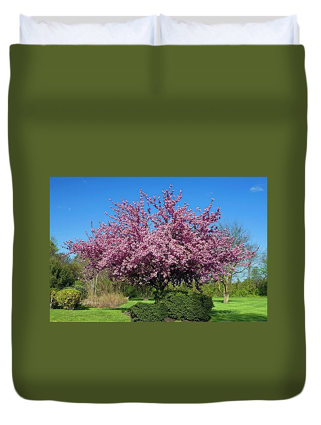 Spring Flowering Tree Duvet Cover featuring the photograph Pink Tree by Sally Weigand