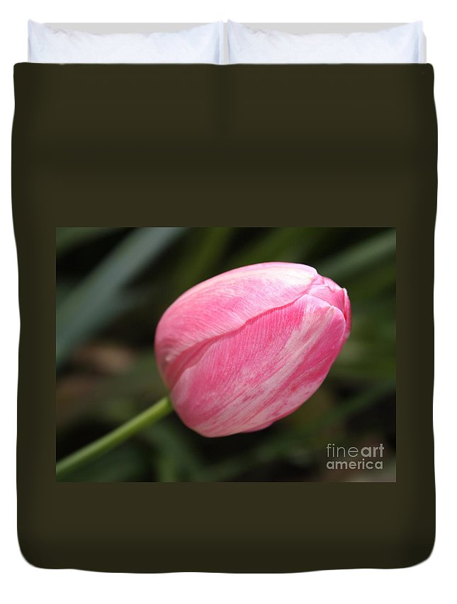 Tulip Duvet Cover featuring the photograph Pink Tulip Closeup by Carol Groenen