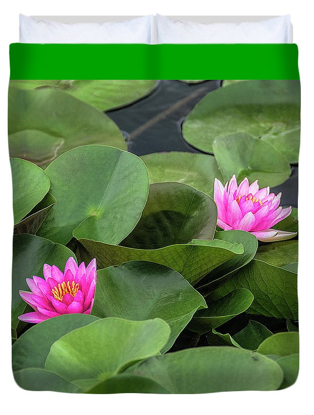 Pink Waterlilies Duvet Cover featuring the photograph Pink Waterlilies by Lisbet Sjoberg