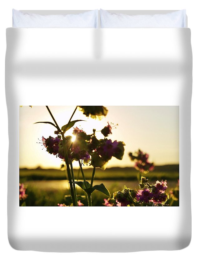 Sunset Duvet Cover featuring the photograph Pink Wildflower Sunset I by Denise Irving