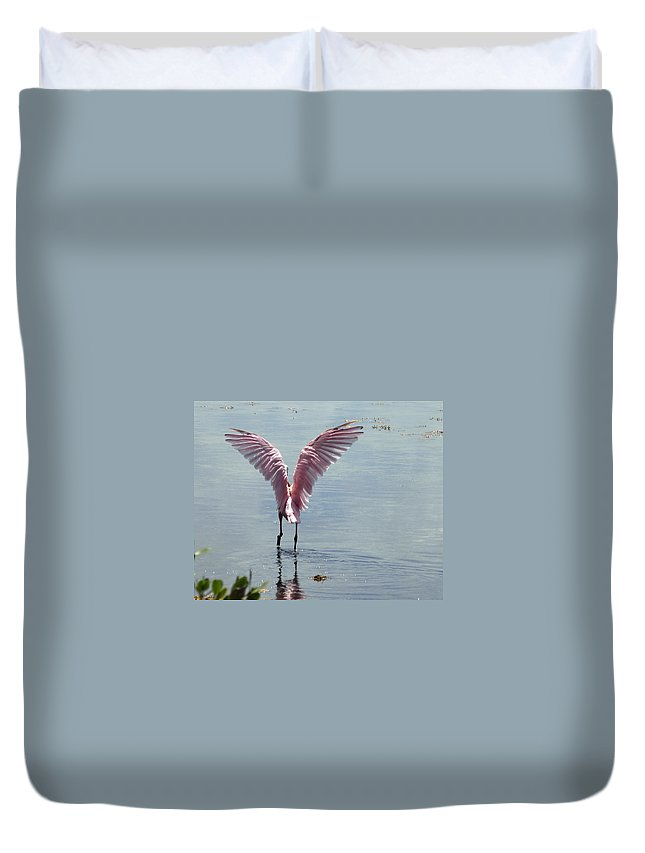 Roseate Spoonbill Duvet Cover featuring the photograph Pink Wings by Kimberly Mohlenhoff