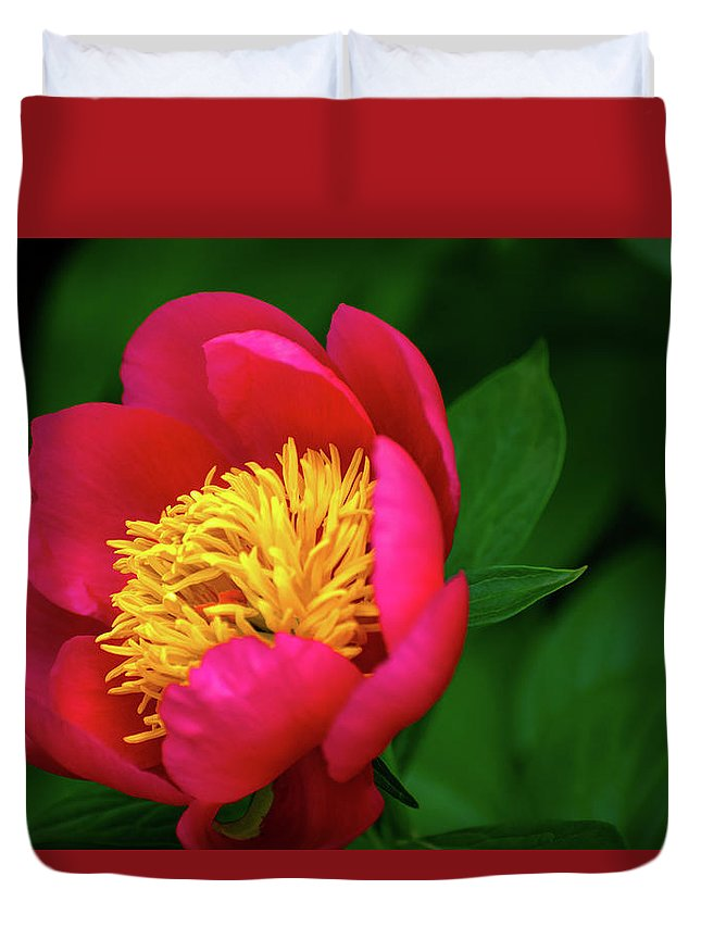 Rose Duvet Cover featuring the pyrography Pistil Delight by Douglas Milligan
