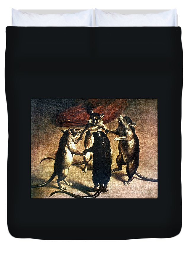 1800 Duvet Cover featuring the photograph Plague: Dance Of The Rats by Granger