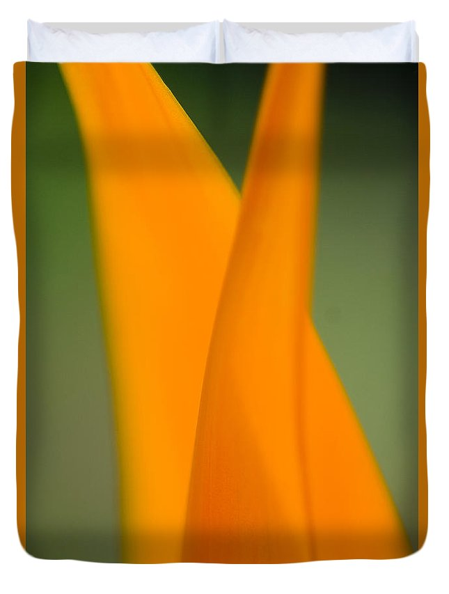 83-csm0049 Duvet Cover featuring the photograph Plant Abstract II by Ray Laskowitz - Printscapes