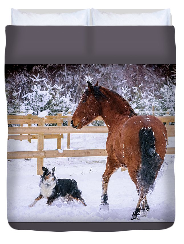 Horse Duvet Cover featuring the photograph Play With Me by Omer Vautour