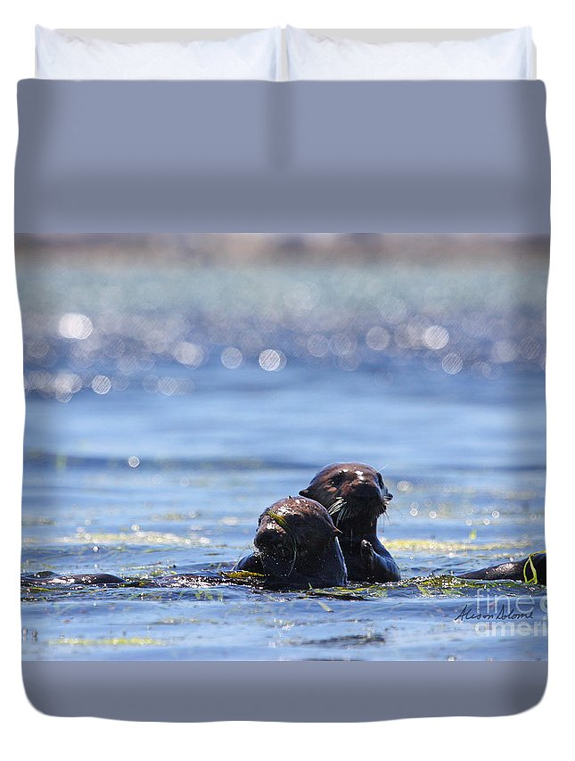 Otter Duvet Cover featuring the photograph Playful Pair by Alison Salome