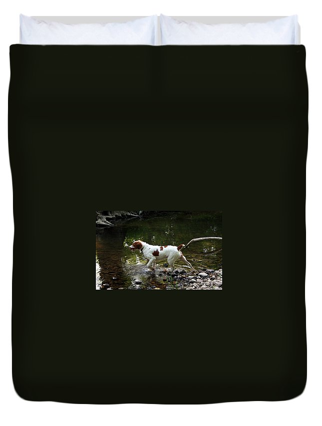 Spaniel Duvet Cover featuring the photograph Playing In The Creek by Rebecca Smith