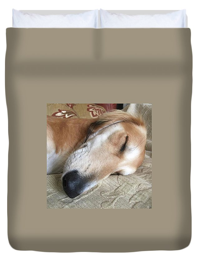 Persiangreyhound Duvet Cover featuring the photograph Please Be Quiet. Saluki by John Edwards