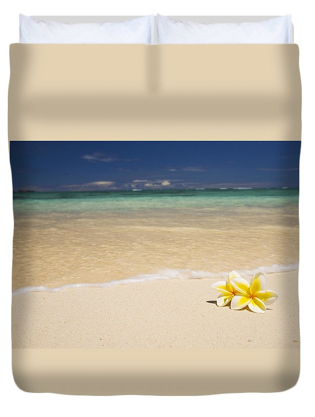 Afternoon Duvet Cover featuring the photograph Plumeria Pair by Tomas del Amo - Printscapes