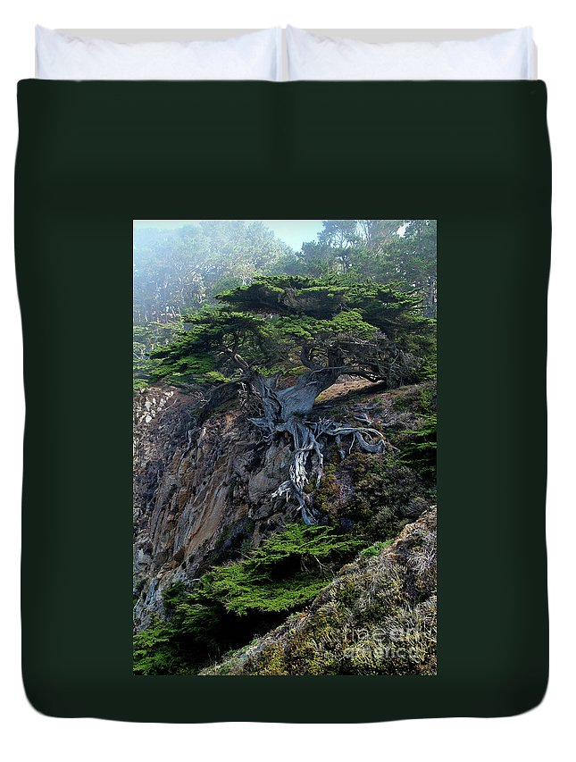 Landscape Duvet Cover featuring the photograph Point Lobos Veteran Cypress Tree by Charlene Mitchell