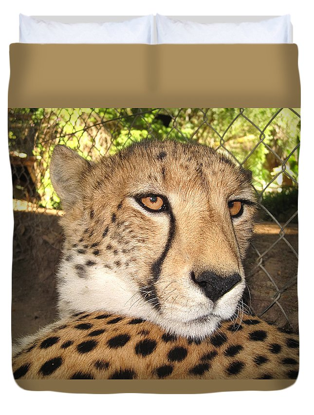 100217 Rep South Africa Expedition Duvet Cover featuring the photograph Poker Player by Gregory Daley MPSA