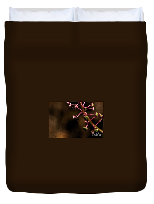 Pokeweed Duvet Cover featuring the photograph Pokeweed Emerges - Wc by Linda Shafer