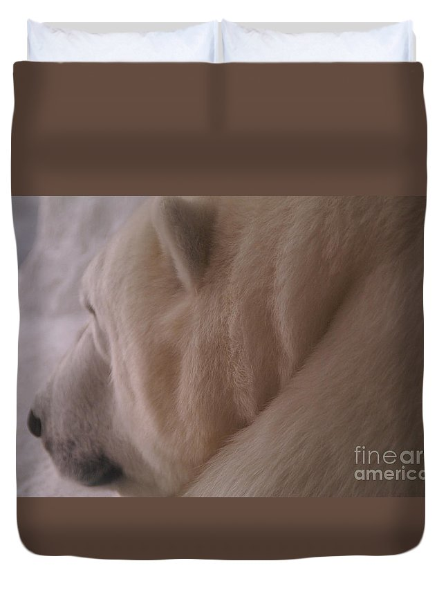 Polar Bear Duvet Cover featuring the photograph Polar Dream by Linda Shafer