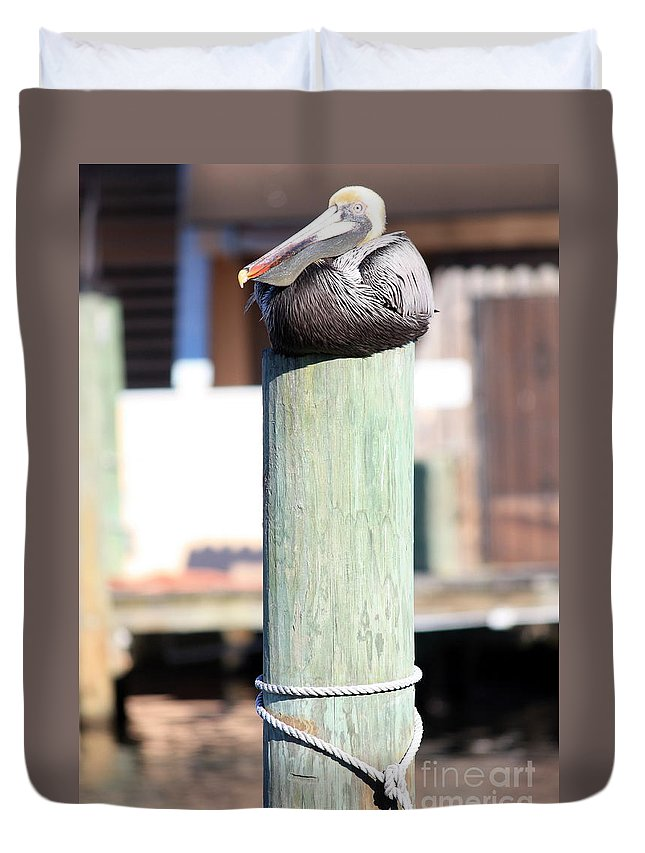 Wildlife Duvet Cover featuring the photograph Pole Top Pelican by Carol Groenen