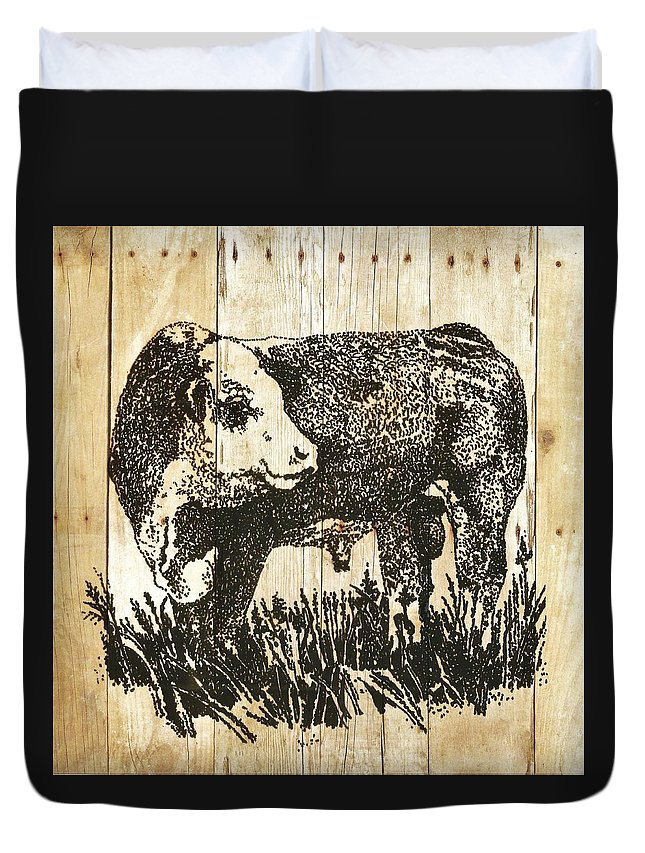 Polled Hereford Bull Duvet Cover featuring the photograph Polled Hereford Bull 11 by Larry Campbell
