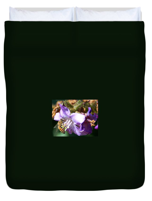 Bee Duvet Cover featuring the photograph Pollinating 1 by Amy Fose