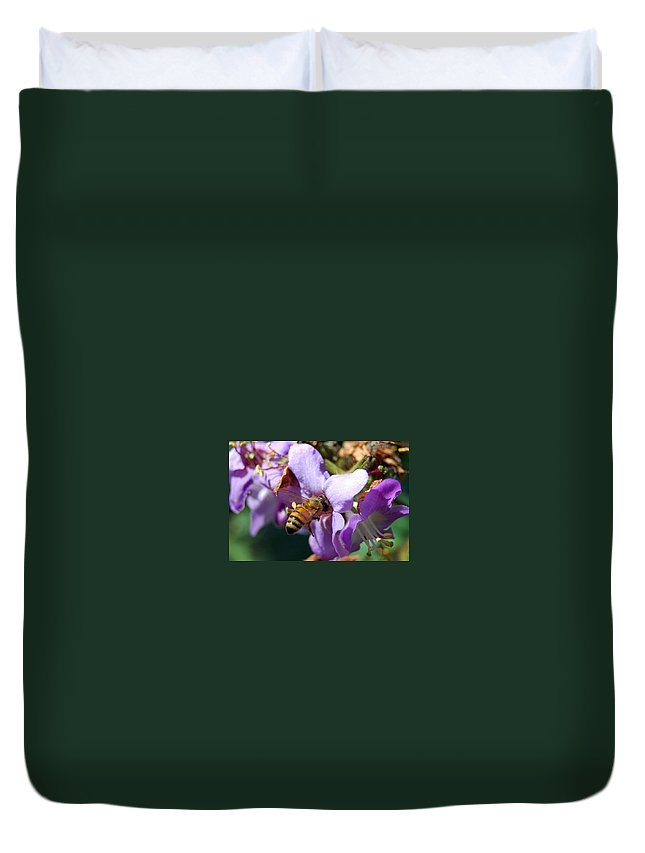 Flower Duvet Cover featuring the photograph Pollinating 2 by Amy Fose