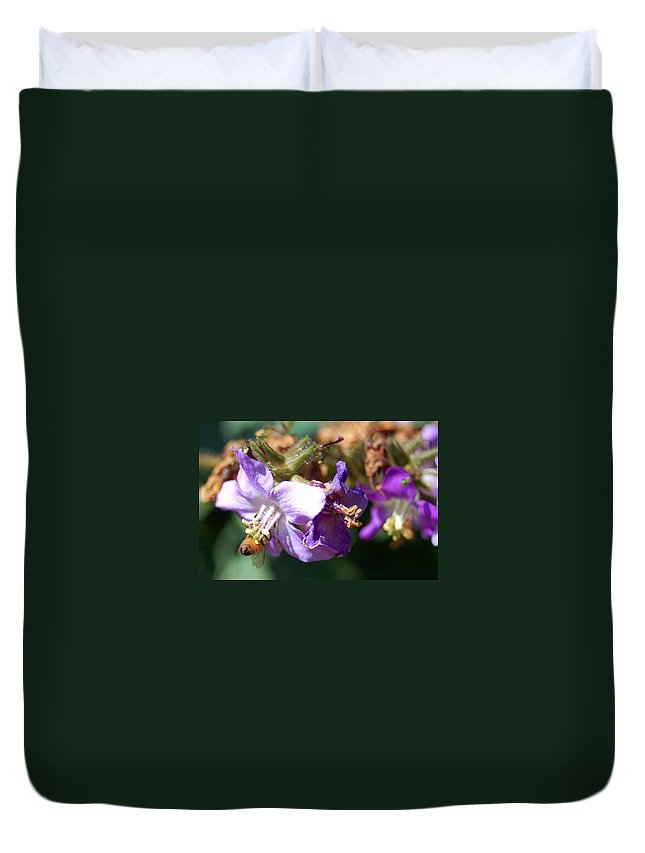 Bee Duvet Cover featuring the photograph Pollinating 3 by Amy Fose