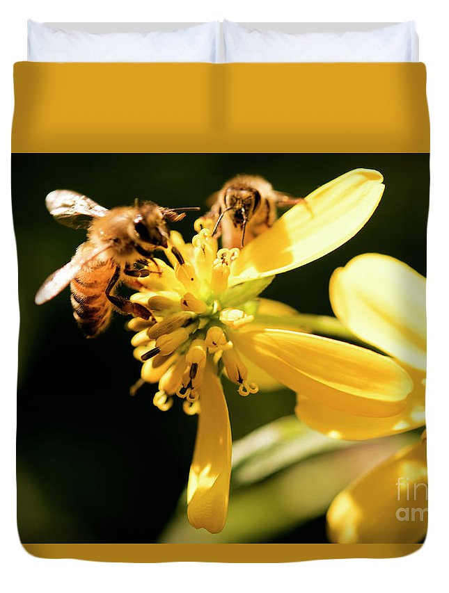 Yellow Flower Duvet Cover featuring the photograph Pollinating Bees by Michelle Himes