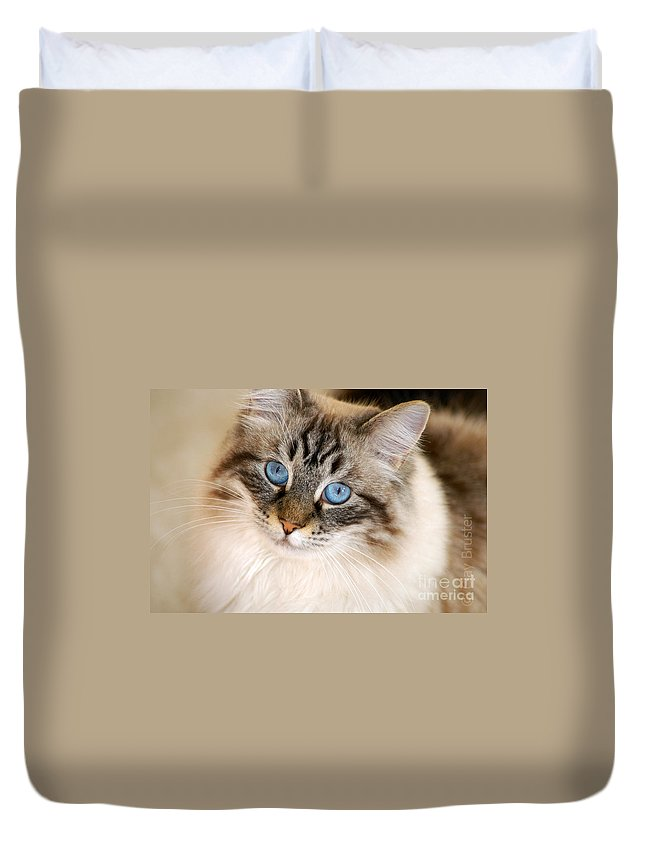 Clay Duvet Cover featuring the photograph Polly by Clayton Bruster