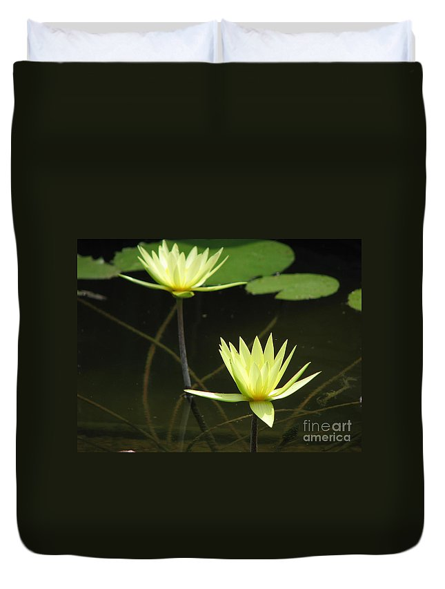 Pond Duvet Cover featuring the photograph Pond by Amanda Barcon