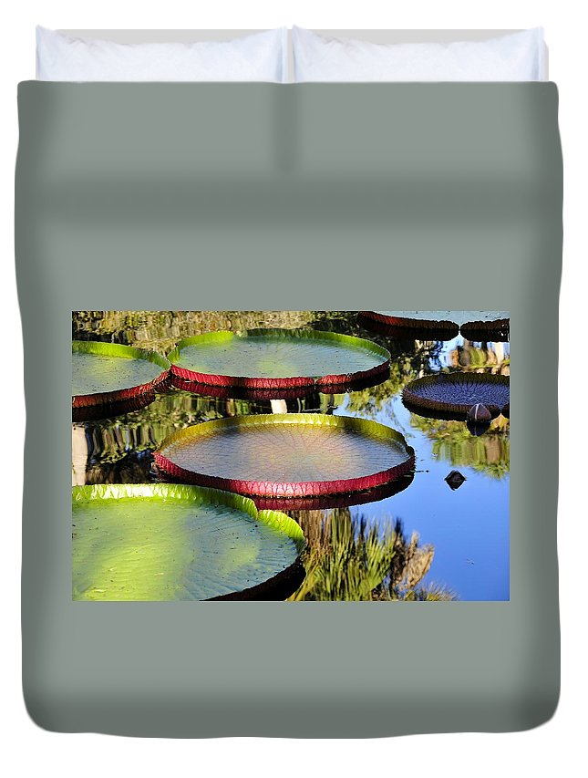 Pond Duvet Cover featuring the photograph Pond Beauties by David Lee Thompson