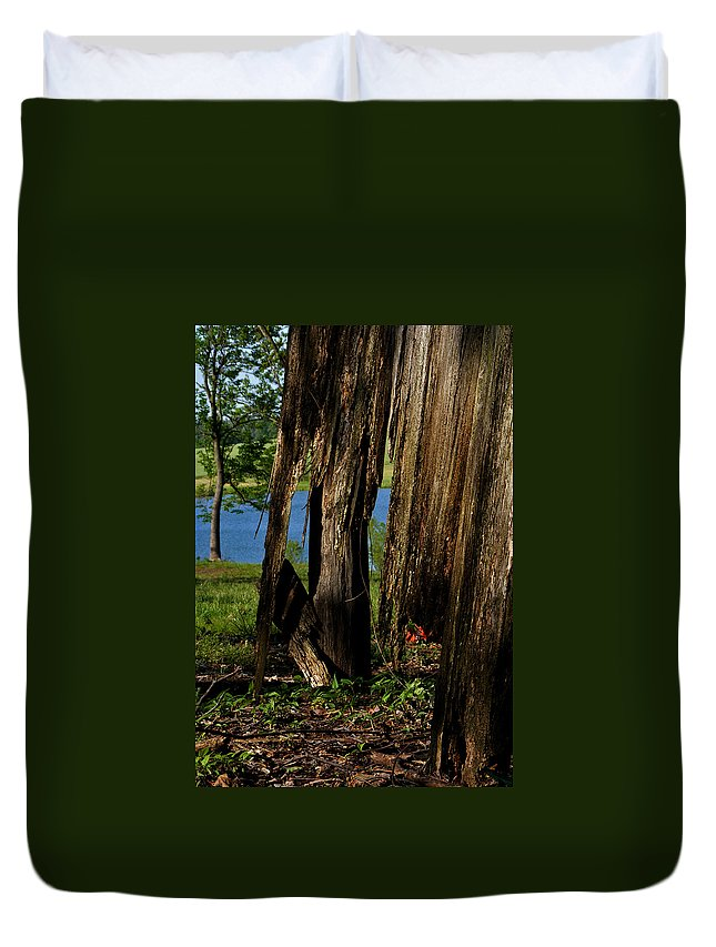 Landscape Duvet Cover featuring the photograph Pond Fragments by Rachel Christine Nowicki