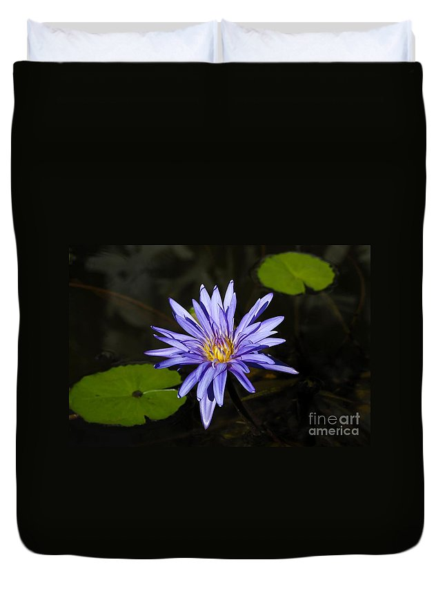 Pond Lily Duvet Cover featuring the photograph Pond Lily by David Lee Thompson