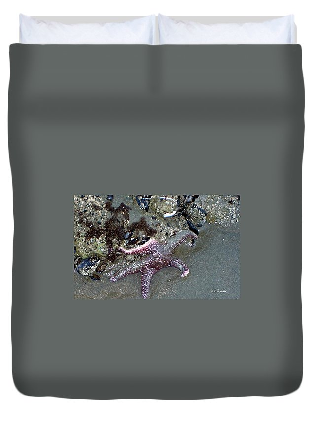 Starfish Duvet Cover featuring the photograph Poor Little Starfish by Elizabeth Klecker