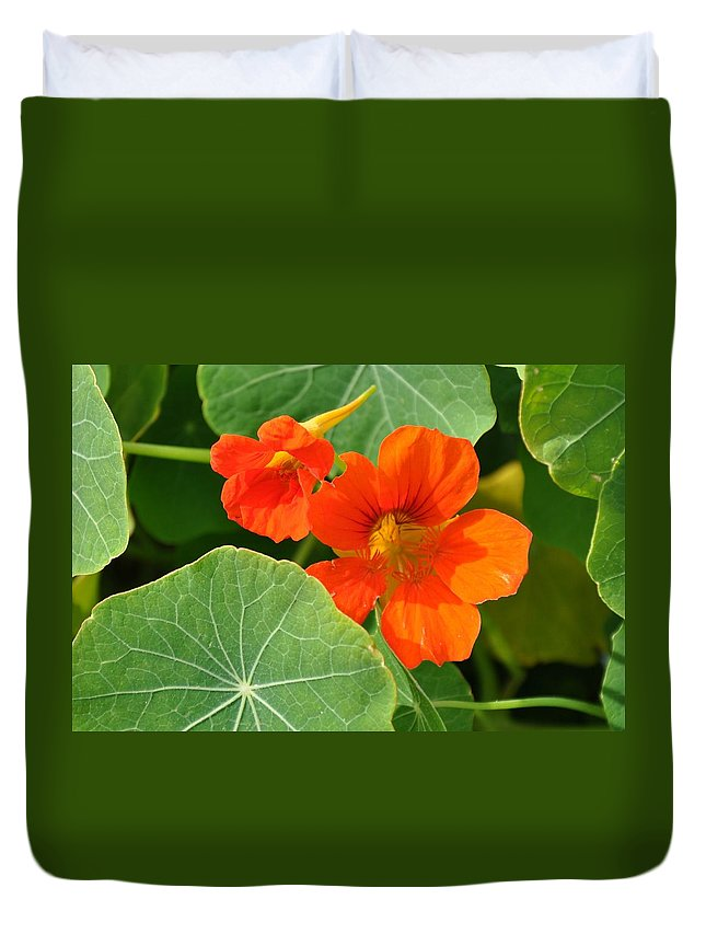 Flower Duvet Cover featuring the photograph Pop Of Orange by Deb Lanford