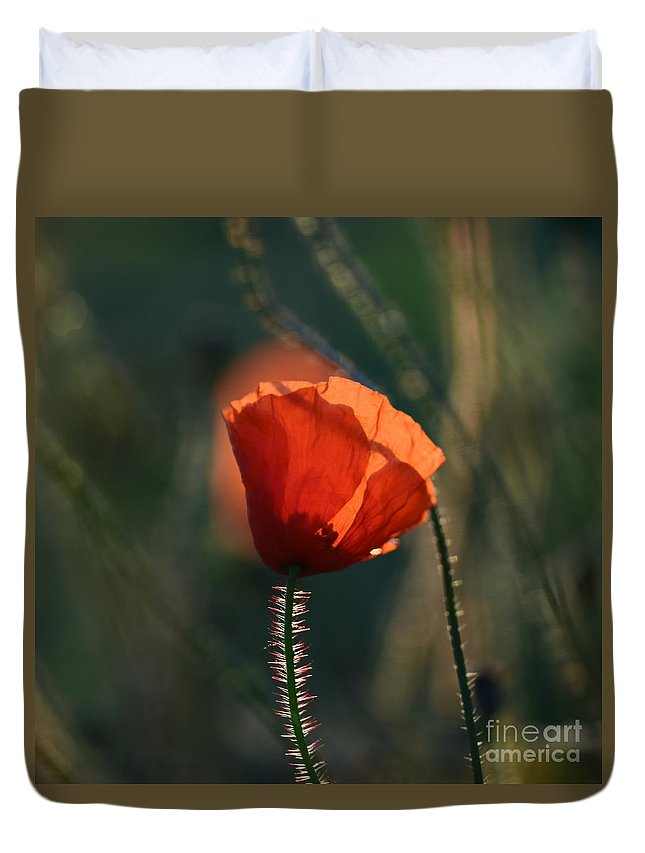 Poppies Duvet Cover featuring the photograph Poppiemania IIi by Rui Militao