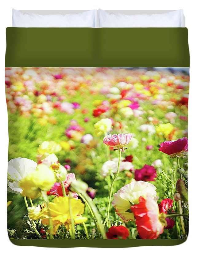 Poppy Duvet Cover featuring the photograph Poppies 1 by Megan Swormstedt