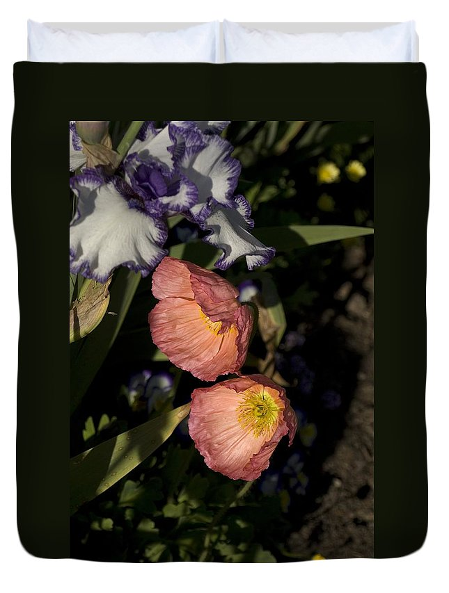 Poppy Duvet Cover featuring the photograph Poppies 6 by Sara Stevenson