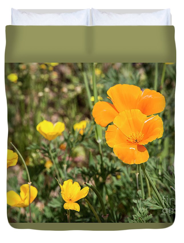 Desert Duvet Cover featuring the photograph Poppies in Bloom by Kathy McClure
