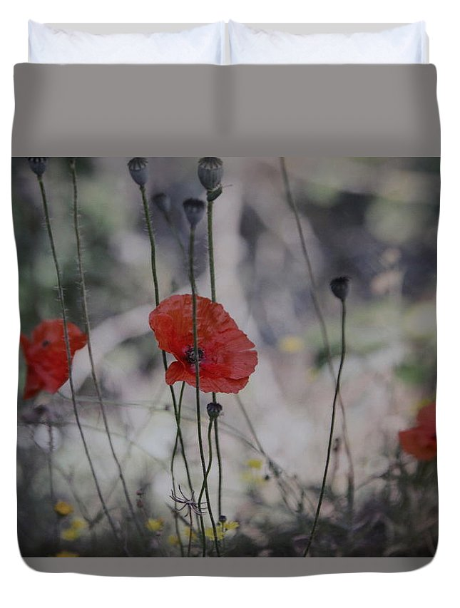 Poppies Duvet Cover featuring the photograph Poppies In Tuscany by Denise Nehila