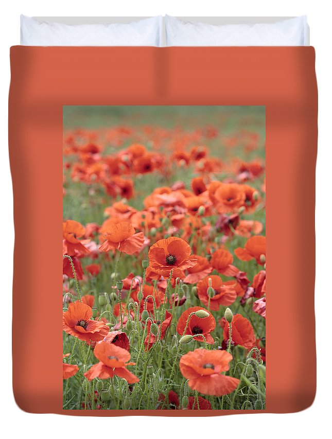 Poppy Duvet Cover featuring the photograph Poppies by Phil Crean