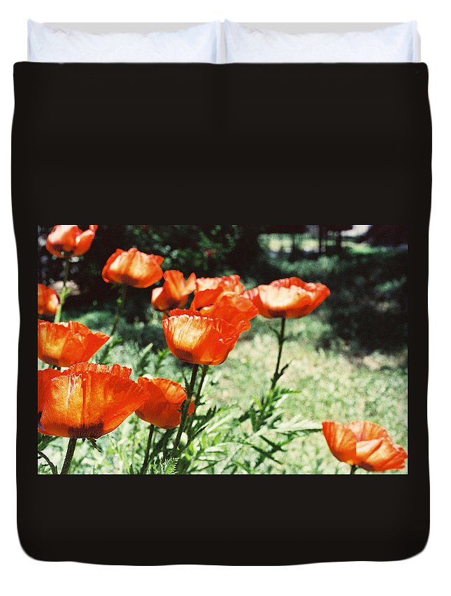 Flowers Duvet Cover featuring the photograph Poppies by Ric Bascobert