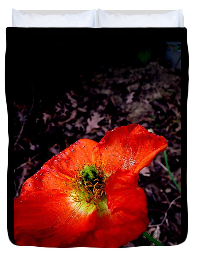 Poppy Duvet Cover featuring the photograph Poppy At Dusk by Erin Rednour