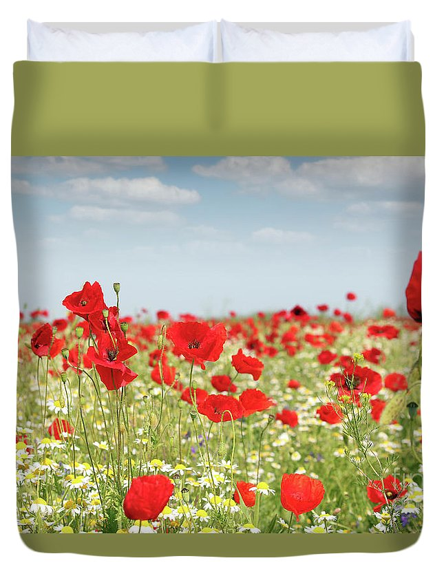 Camomile Duvet Cover featuring the photograph Poppy Flowers Field Nature Spring Scene by Goce Risteski