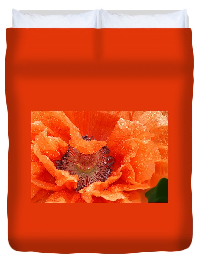 Orange Duvet Cover featuring the photograph Poppy by Heather Coen